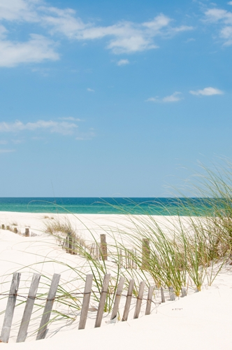 There are many beaches in Florida that may be good destinations.