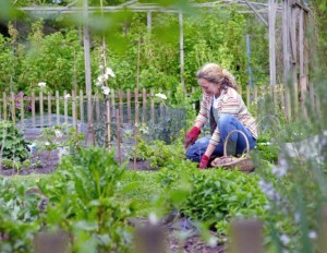 You may want to involve your children in planting a garden.